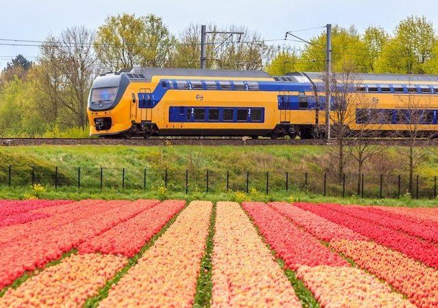 Viagem de trem de Amsterdã a Leiden