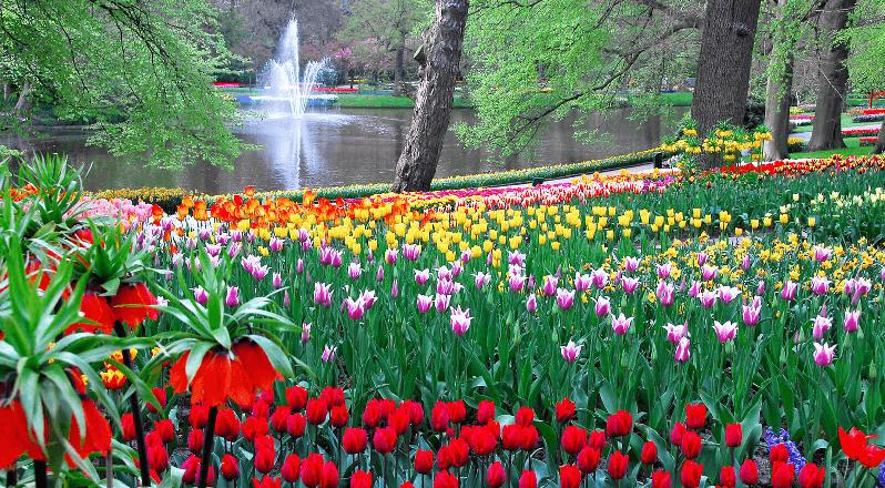 Jardim Keukenhof em Amsterdã