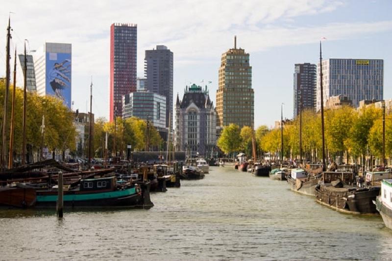 Outono em Roterdã