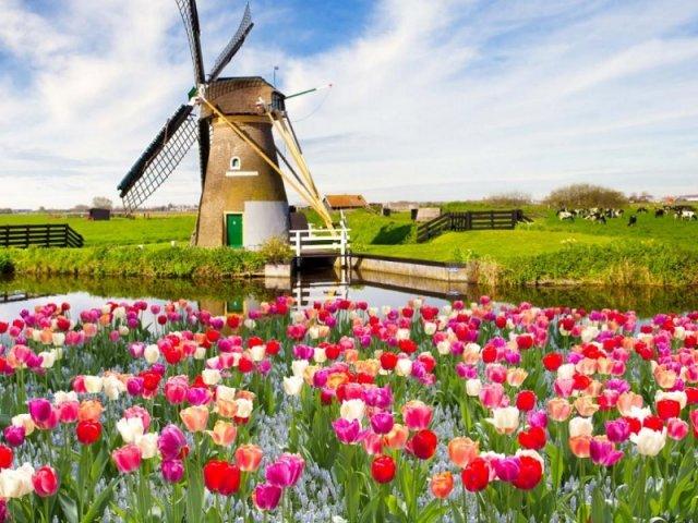 Remessas internacionais para Holanda